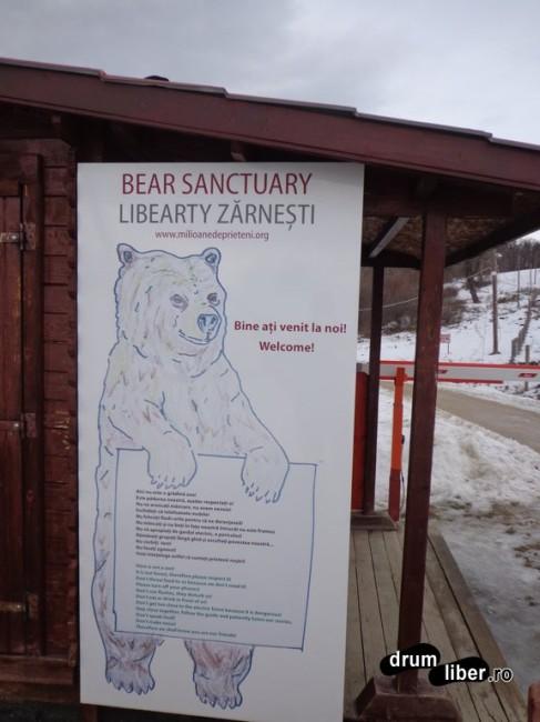 Rezervația de Urși de la Zărnești - Libearty Bear Sanctuary