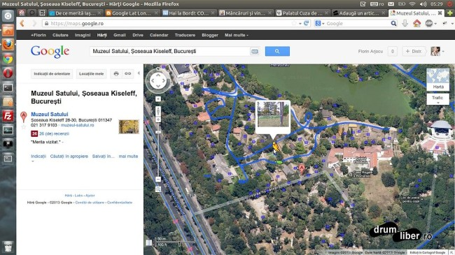 Google Maps Street View - București - Muzeul Satului