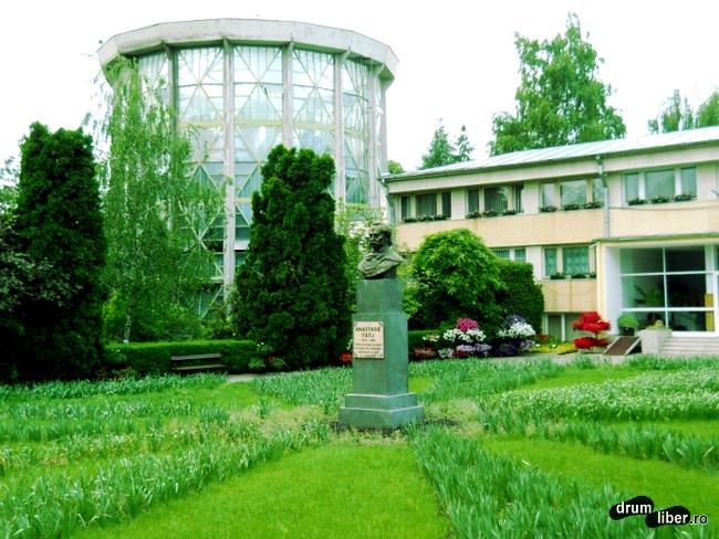 Statuie Anastasie Fătu și sera turn