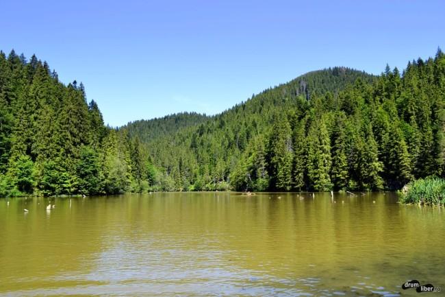 Vedere spre lac