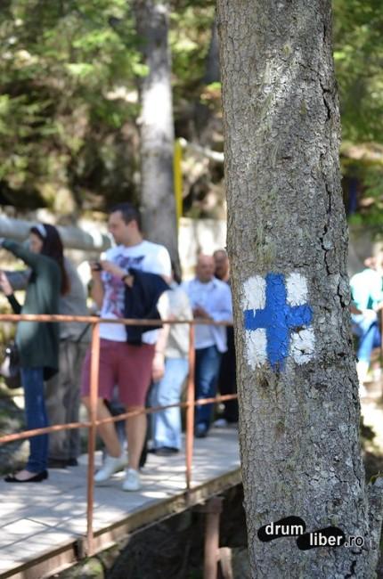 Cruce Albastră - marcaj spre peșteră
