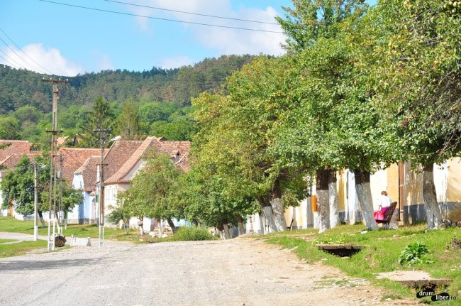 Strada principală din Viscri
