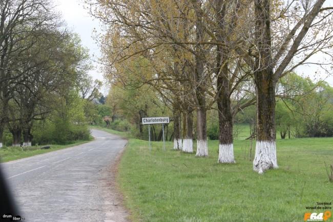 Intrarea pe teritoriul Șarlotei. Un drum tare frumos.
