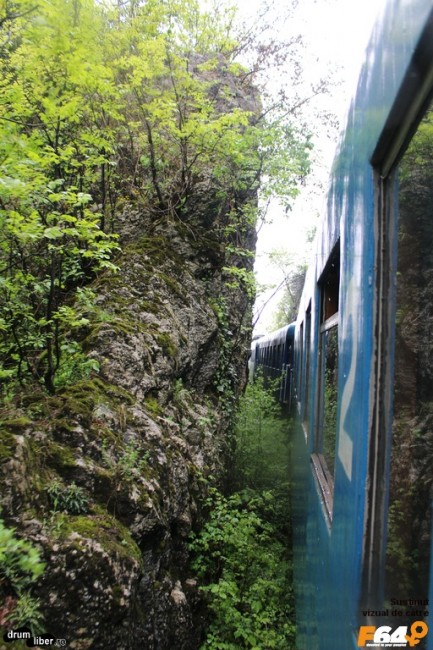Stâncă, pădure și trenul nostru