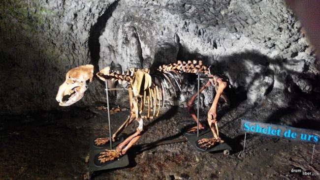 Peștera Muierilor, Gorj