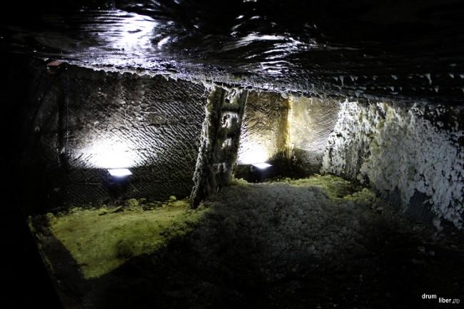 Sarea a acoperit scara în preabatajul galeriei Ghizela (Gizela) din Salina Turda