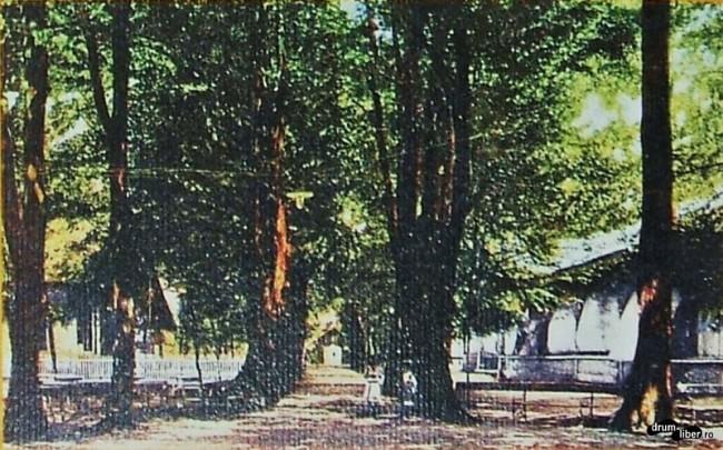 Poze vechi cu Parcul Orășenesc - 1925