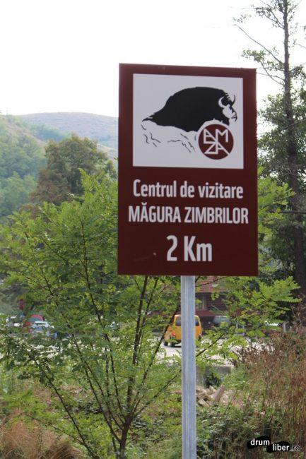 Măgura Zimbrilor - Armeniș, Caraș-Severin